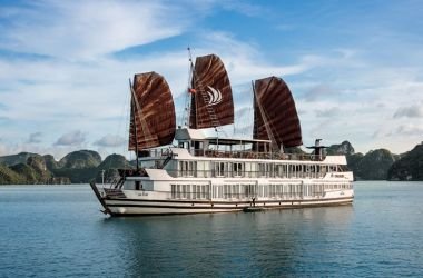 Luxury Pelican Cruise