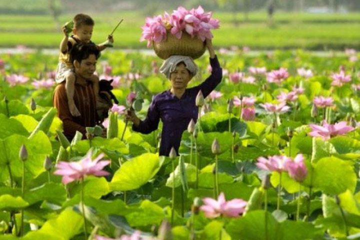 15 Days Unforgettable Vietnam Family Holiday